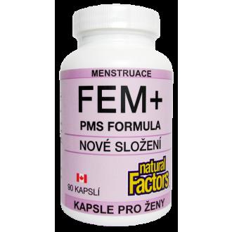 FEM+ PMS FORMULA 90cps